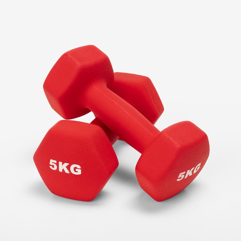 Paar 2 x 5 kg Hanteln Fitnessstudio und Fitness-Vinyl Megara - am besten